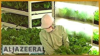Earthrise - Japan's Future Farms