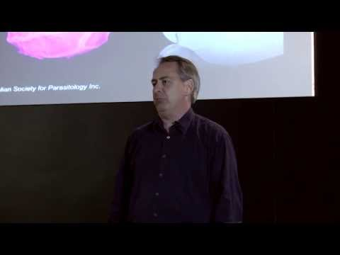 Secret Life of Parasites: Nick Smith at TEDxJCUS