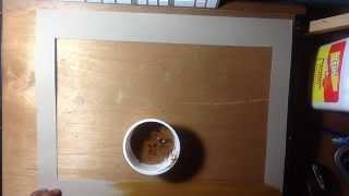Cafe resistol con de pintura