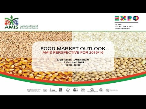 AMIS Food Outlook Conference 2015: Rice market situation and outlook