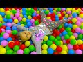 Yasya plays kids musical instrument and climbs rock Video for Kids