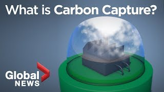 Why carbon capture could be the secret to fighting the climate crisis