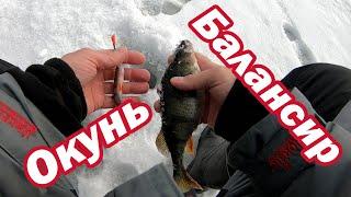 Окунь на балансир Лаки Джон Фин он Реально выручает Ловля окуня зимой Рыбалка на окуня в феврале