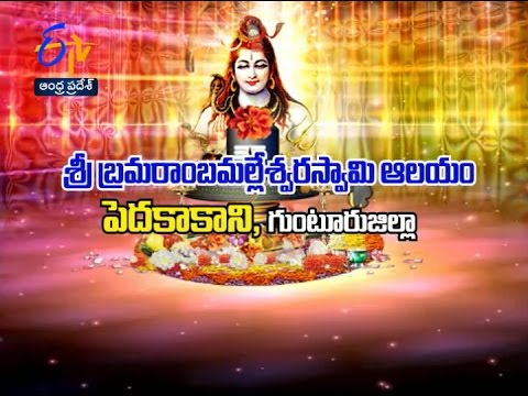 Sri Bramarambha Malleswara Swamy Temple | Pedakakani | Guntur |Teerthayatra |  2nd January 2017|AP