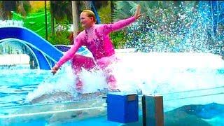 DOLPHIN SURFING!!!