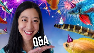 All Your Questions! Dream Tank, Getting Recognized, Pets to Avoid