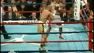 Roy Jones Jr. vs Derrick Harmon- Part 1 of 5 (Title fight)