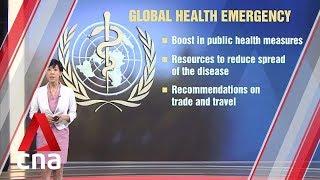 Too early to declare coronavirus outbreak a global emergency: WHO