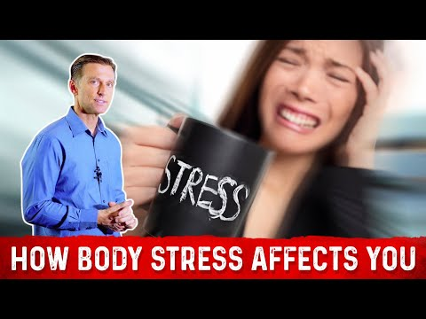 How Body Stress Affects You & Where It Accumulates!