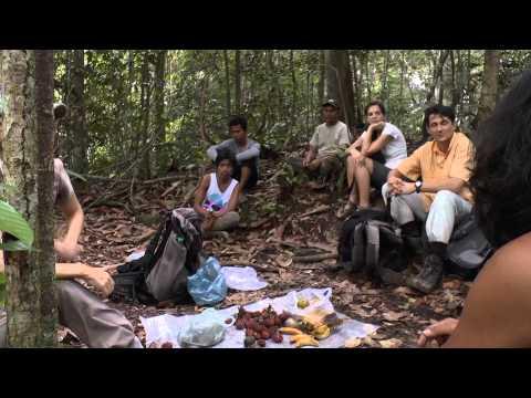 Abenteuer Sumatra - von Orang Utans, Elefanten und wilden Wassern
