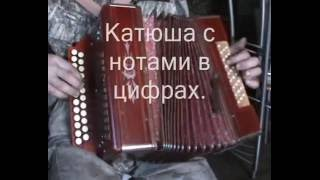 Катюша с нотами в цифрах. Играй гармонь.