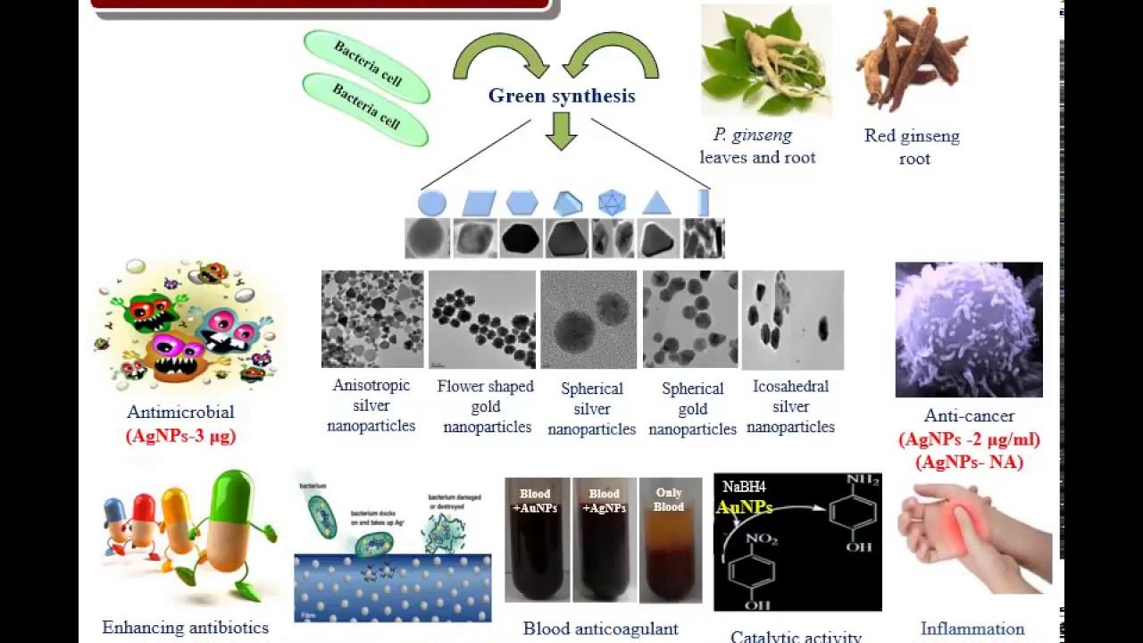 Phd thesis on biosorption