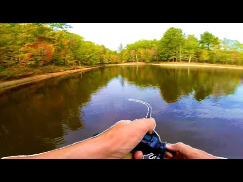 FALL BASS Fishing In Raleigh NC