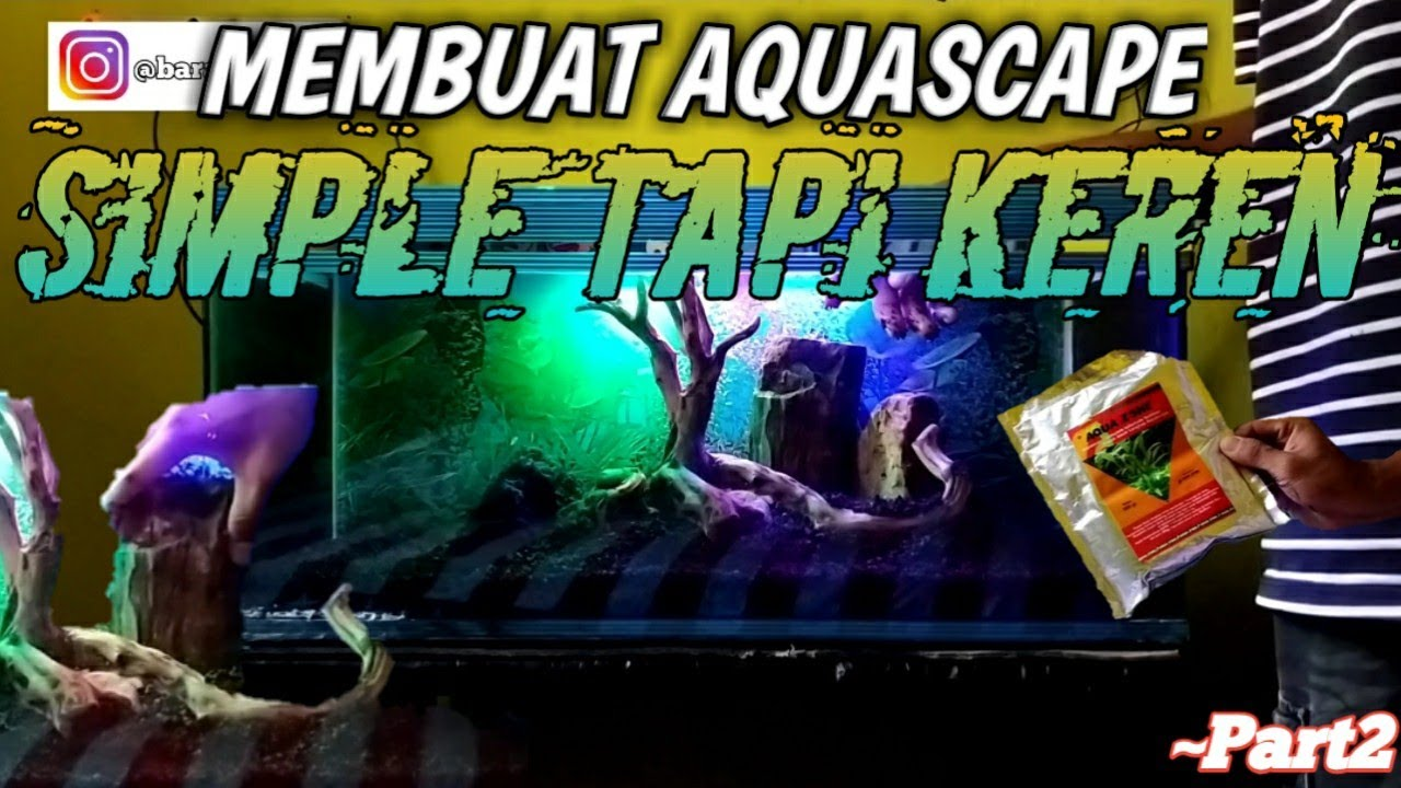 PART 2 | TUTORIAL MEMBUAT AQUASCAPE SIMPLE TAPI KEREN ...