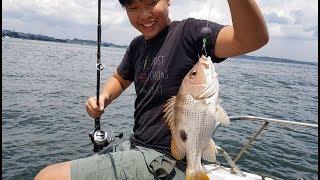 Ubin Golden Snapper Frenzy S6EP23 ONZZ Fishing Singapore