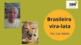 O Jeito Brasileiro de ser Vira-lata