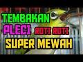 Tembakan Pleci Roti Roti Super Mewah  Mp3 - Mp4 Download