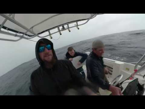 Georgetown offshore fishing trip April 2019