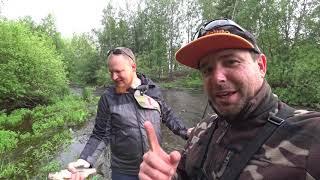 Рыбалка на речках сказочной красоты Освобождаем форельную речку от голодных щук Старая мельница