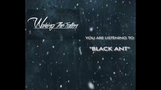 WAKING THE FALLEN BAND -  BLACK ANT (REVIEW SONG)