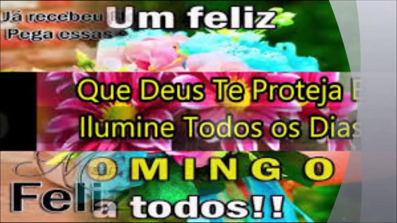 Bom Dia Amigos E Amigas, Tenha Um Feliz Domingo