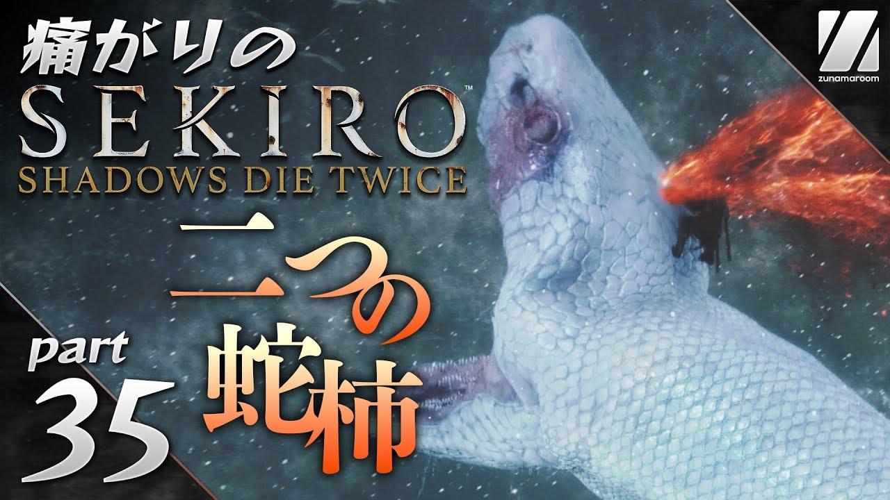 【痛がりの隻狼】#35 ついに大蛇(白蛇)と決著!2つの蛇柿を入手。「SEKIRO: SHADOWS DIE TWICE」実況 - YouTube