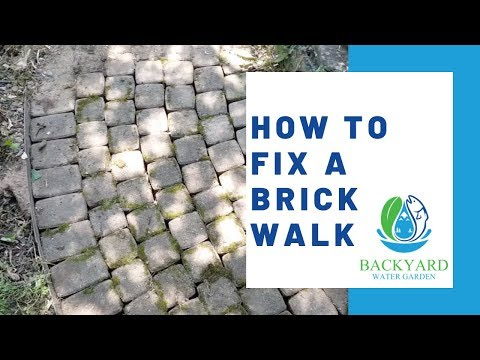 How To Fix A Brick Walk