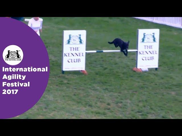 Olympia Semi Final - G3-7 ABC Large - Part 3 | International Agility Festival 2017