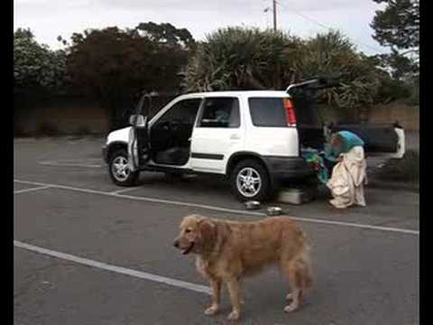California town creates parking havens for homeless