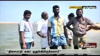 Live report: Over 50  dolphins wash ashore in Thiruchendur