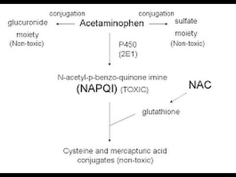 Acetaminophen Toxicity / Poisoning