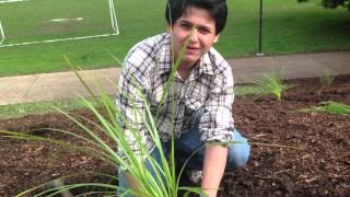 Shail Kaushal - Looking out for the Environment