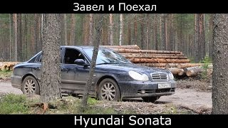 Обзор Hyundai Sonata 2005. Тест-Драйв По-Русски: Хендай Соната В Лесу И На Бездорожье.
