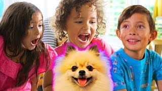 NEW PUPPY!  Kids react to The Cutest Puppy EVER!! By FAM JAM