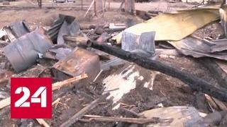 Площадь лесных пожаров в Сибири стремительно растет