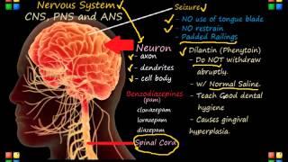 NCLEX Review Neurological System