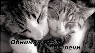 Обнимаю тебя за плечи…