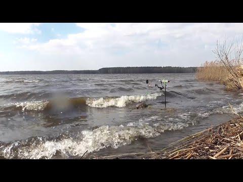 Рыбалка на фидер в шторм.