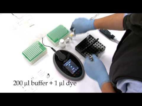 Qubit® 2.0 Fluorometer in Action - YouTube
