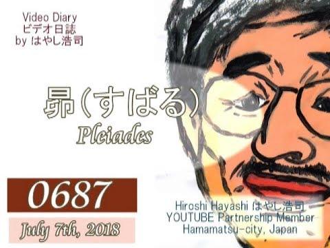 0687 Video Diary ビデオ日誌「人はみな切ない思い出を引きずり、歯を食いしばって生きていくものなのか」byはやし浩司