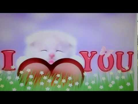 Cute Live Wallpaper App I Love You Kitty Cat Live Wallpaper Youtube