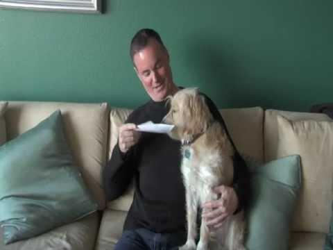 A Dog's Purpose Interview.mov