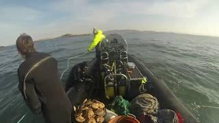 Video Clam Diving, Argyll Scotland download MP3, 3GP, MP4, WEBM, AVI, FLV Desember 2017