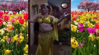 Иолла танец живота. Belly dance !