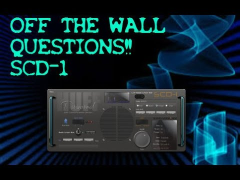 off the wall questions