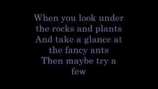 The Bare Necessities   lyrics
