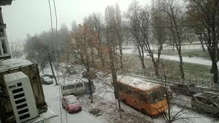Первый снег(2)