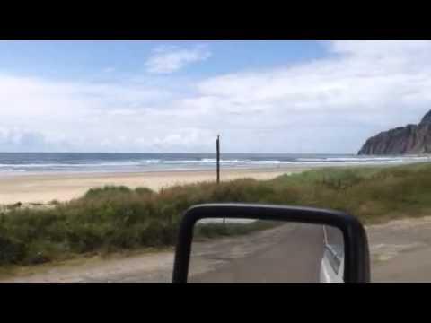 Beach drive manzanita or
