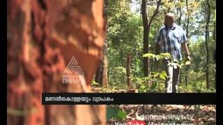 Forest Mafia active in Idukki :Asianet News Exclusive