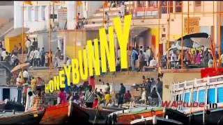 The Honey Bunny Song Idea
